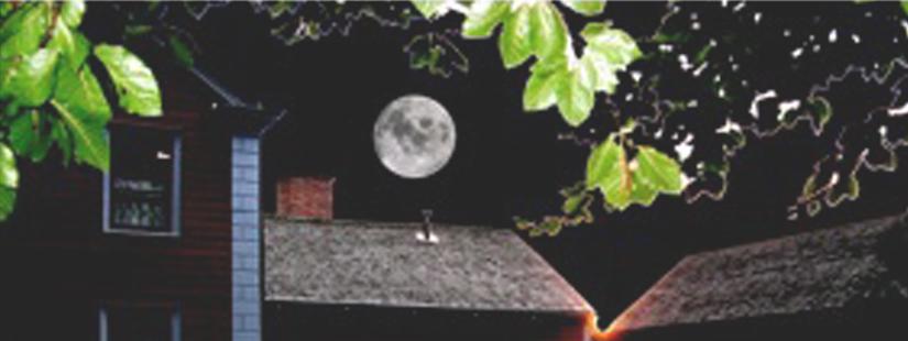 Full Moon Flashlight Tour at Stone-Tolan 1
