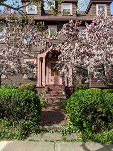 Park Avenue Historic District Update 2